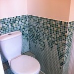 green-graduated-tiles-in-loo_1
